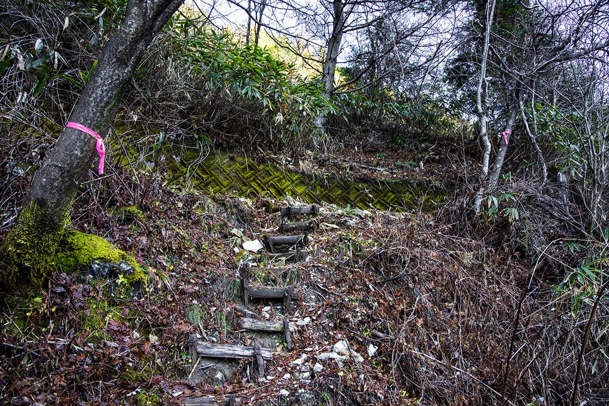 土手のようなところに階段が作られている