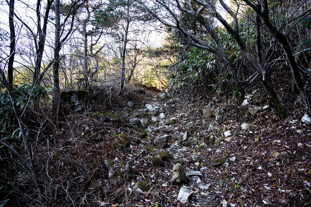 登ったら旧林道的な雰囲気の荒れた道