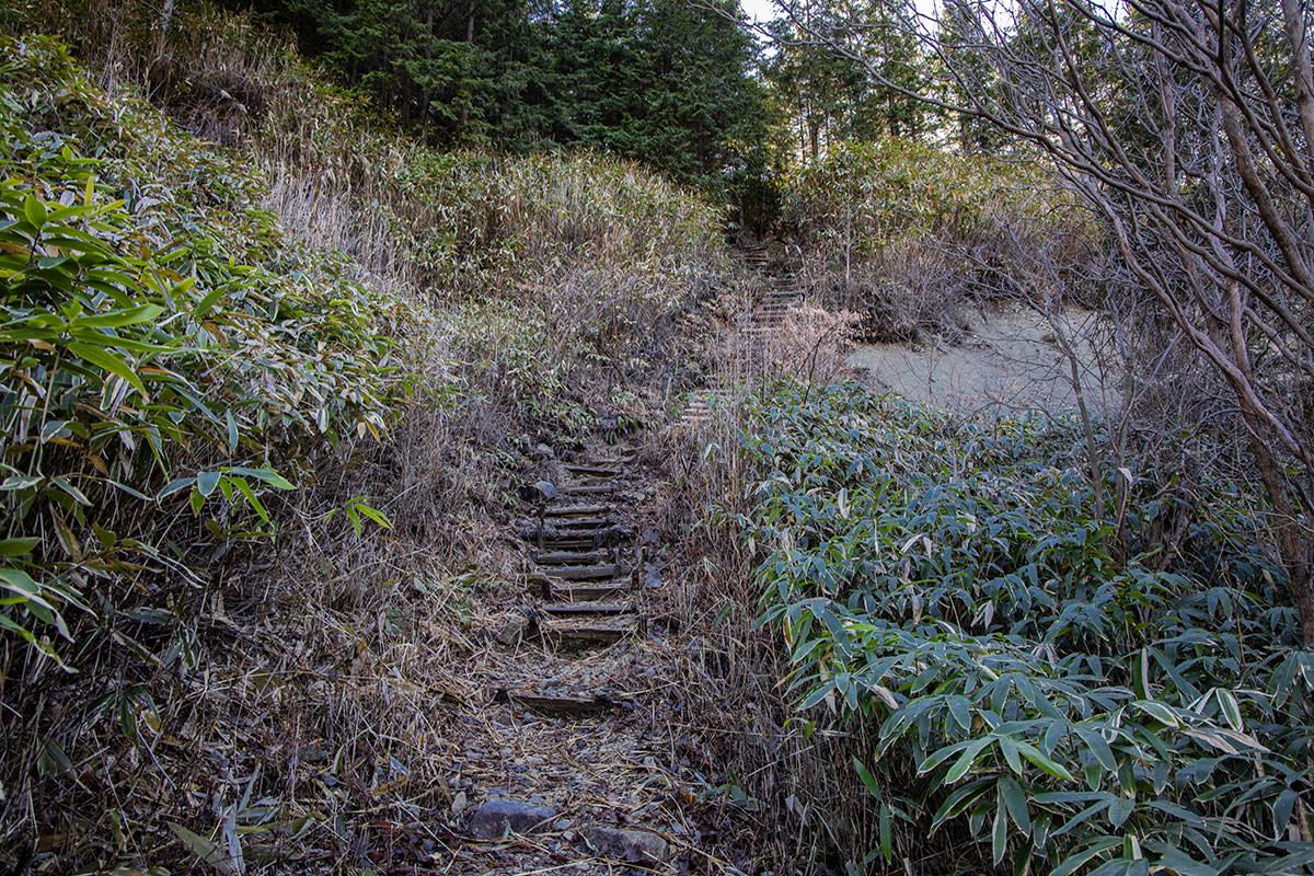 作業小屋の裏から階段を登る