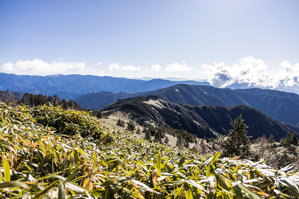 林道から見えていた稜線を見下ろす