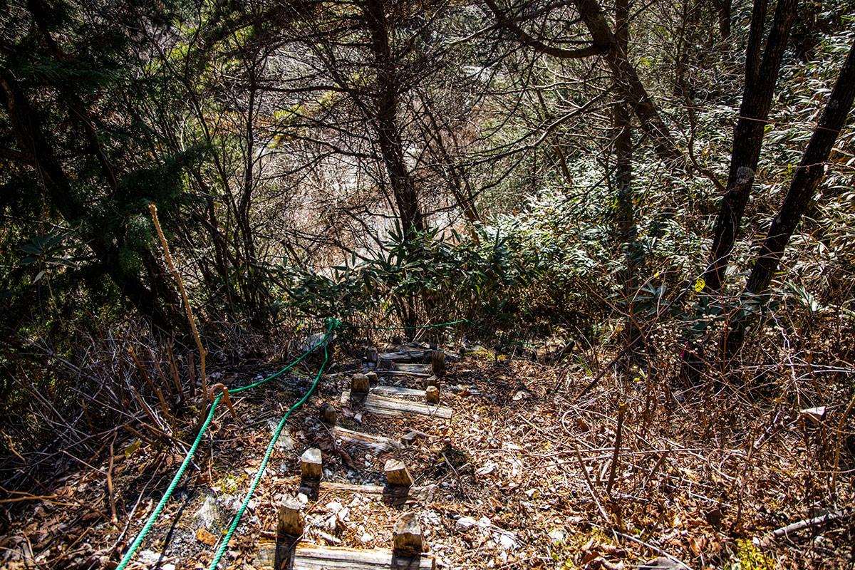 林道へと戻る階段は急で危ない