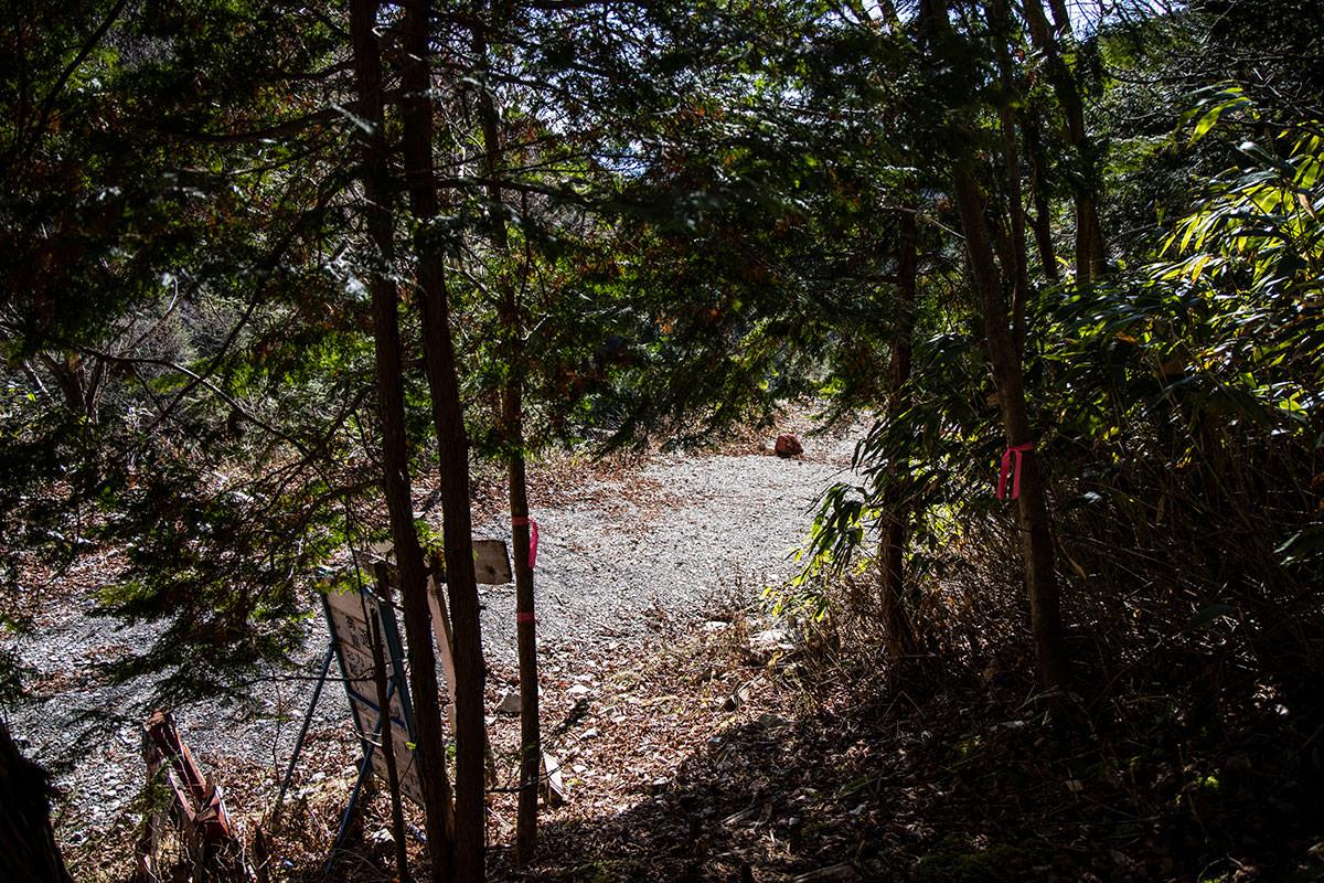 ここから林道歩き