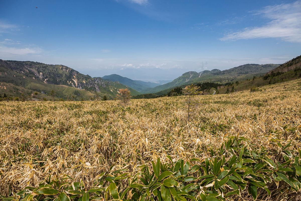 【御飯岳】登山百景-麓の街が少し見える