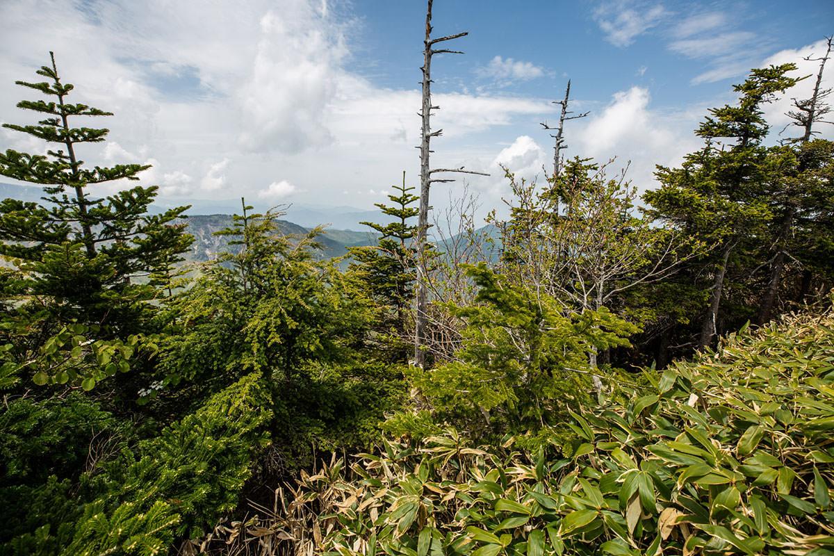 【御飯岳】登山百景-麓が少しだけ見える