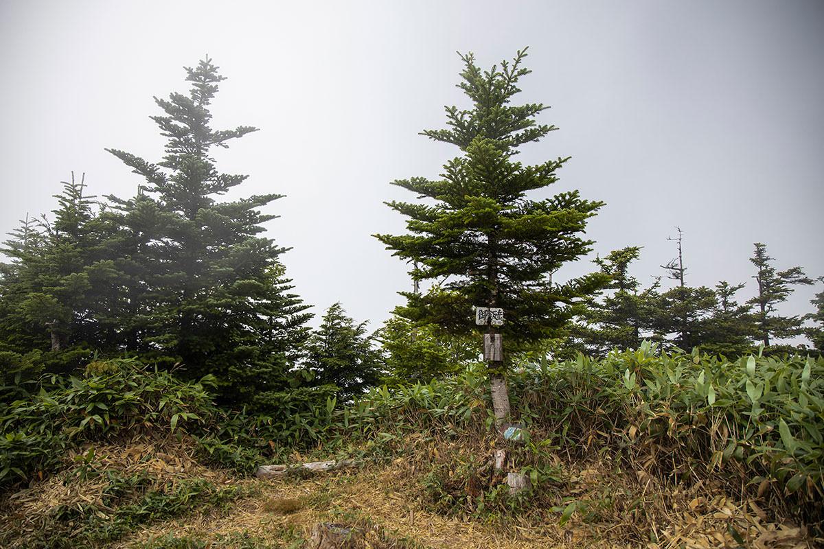御飯岳の山頂到着