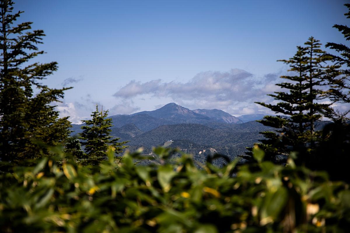 遠くに岩菅山