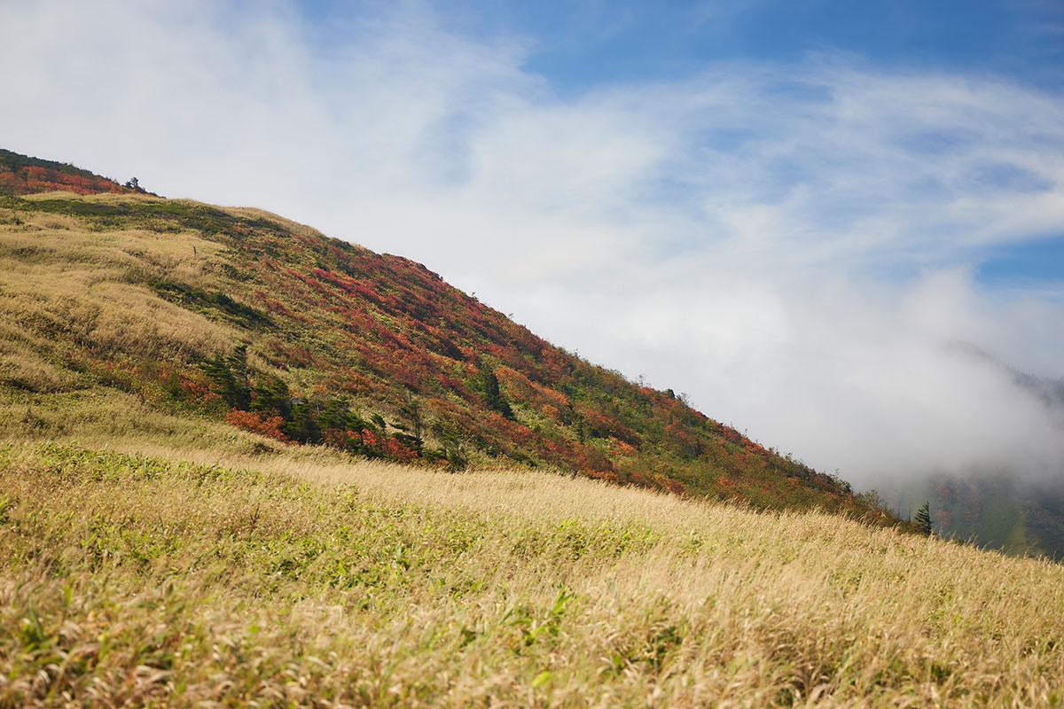 御飯岳-振り返ると毛無山がすごいことになっていた