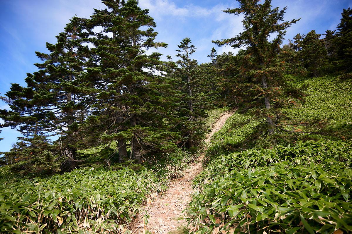 御飯岳-いちばん急な登り坂