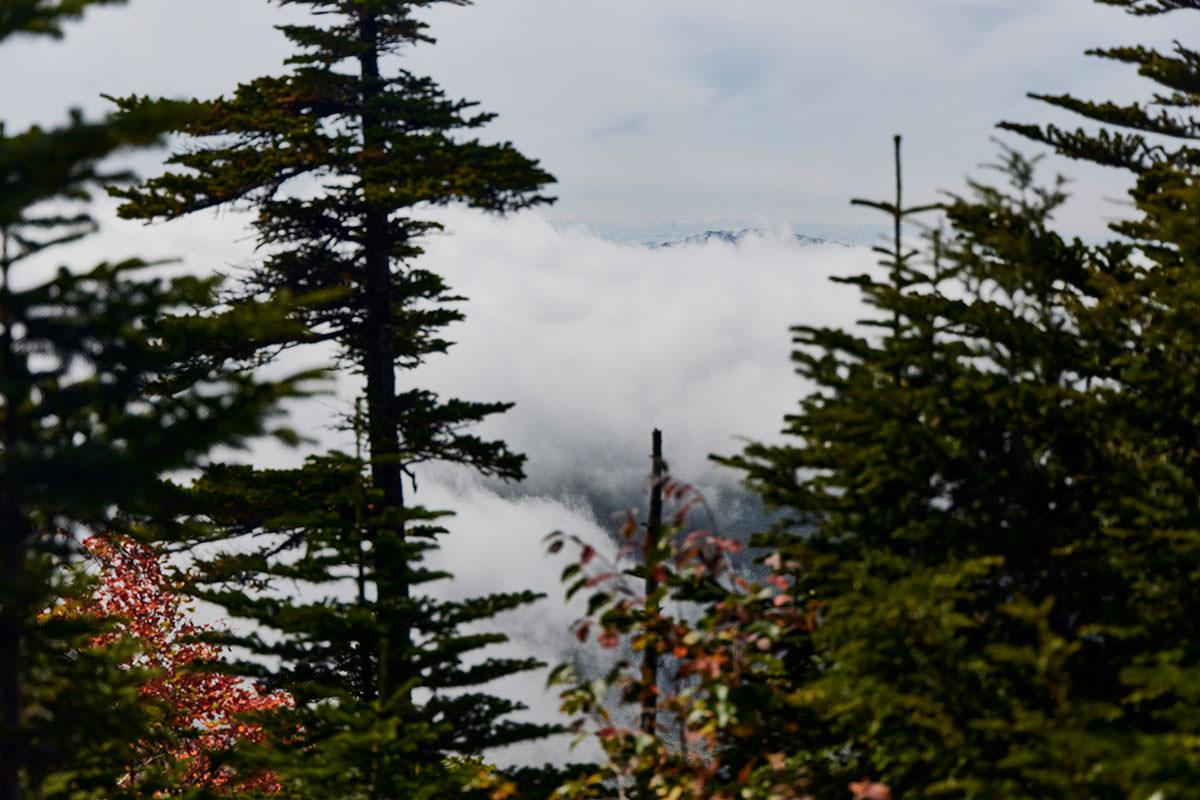 御飯岳-破風岳は完全に雲の中