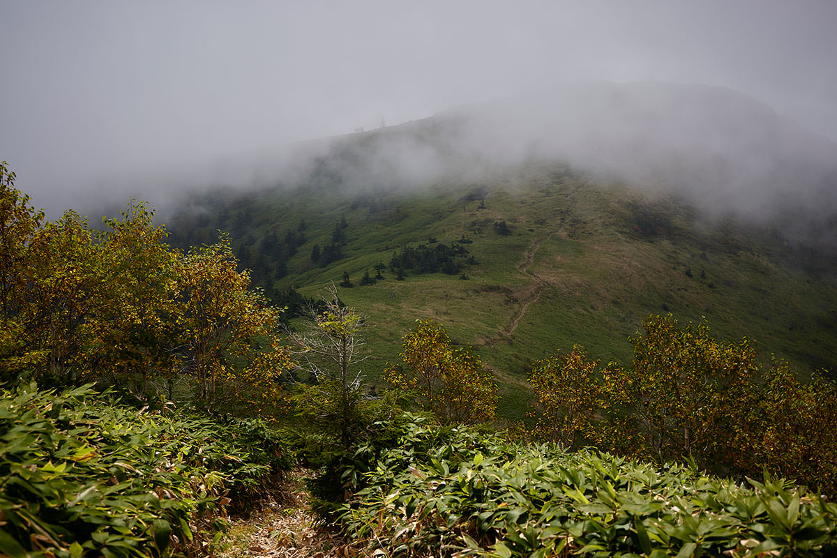 御飯岳-あの霧の中に毛無山がある