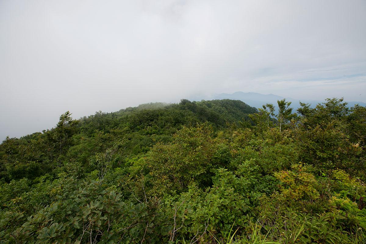 大渚山-西峰の方