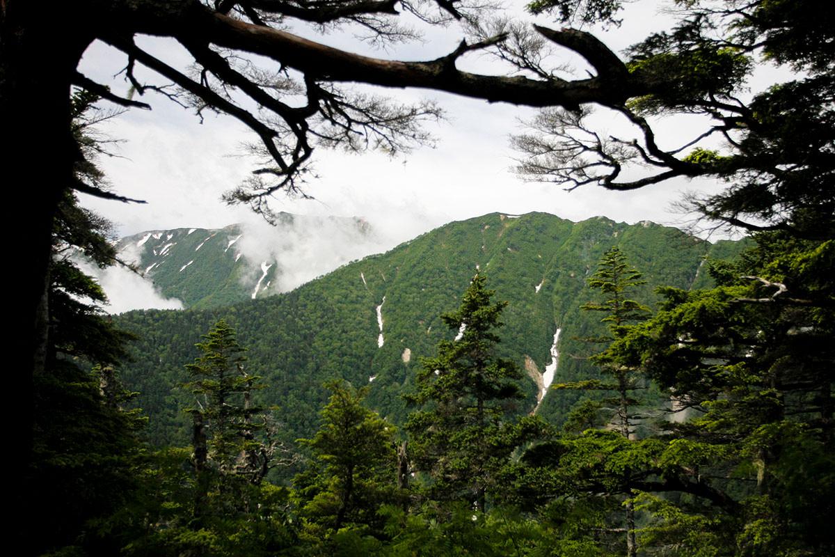 【大天井岳】登山百景-山並みがチラチラ