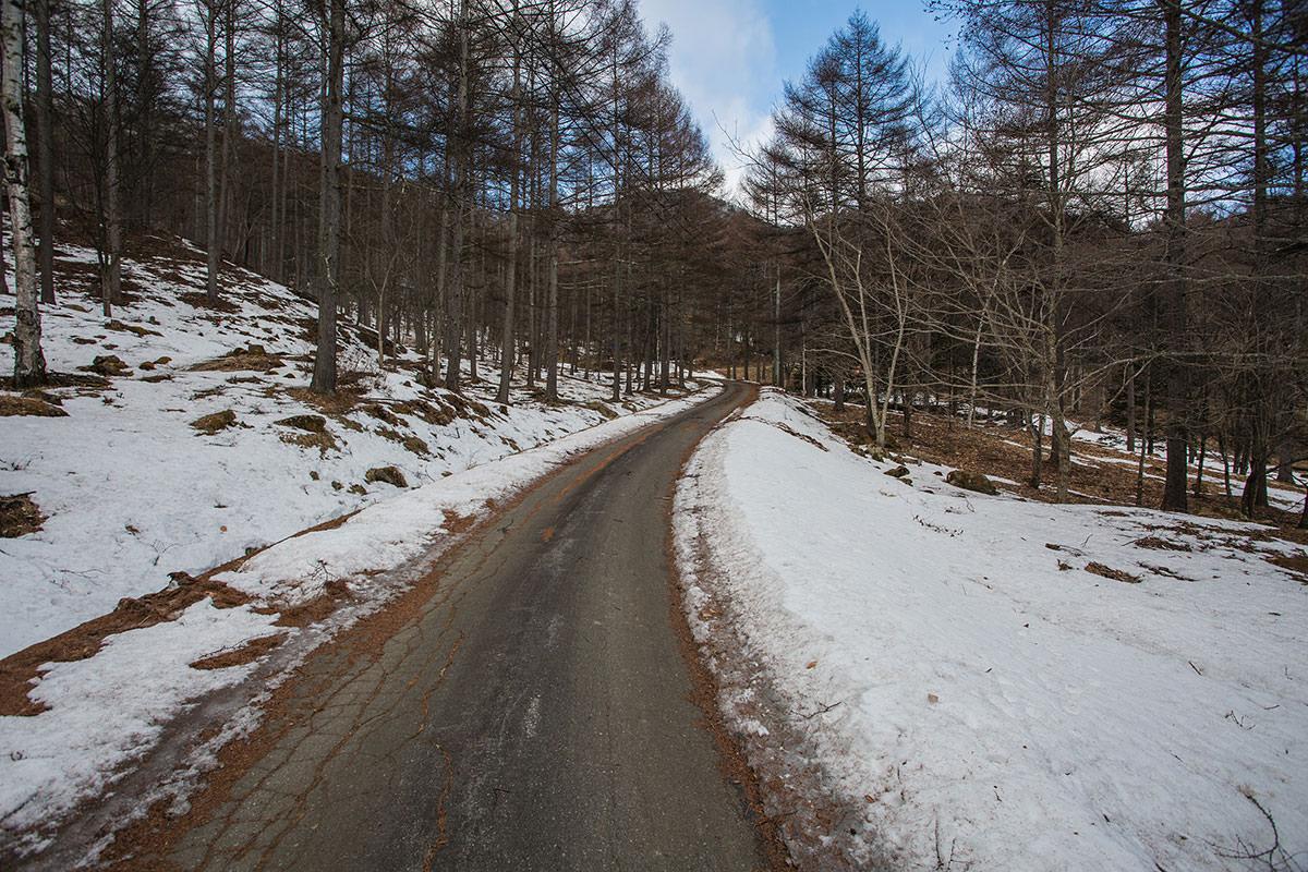 【男山】登山百景-舗装の道を登山道へ