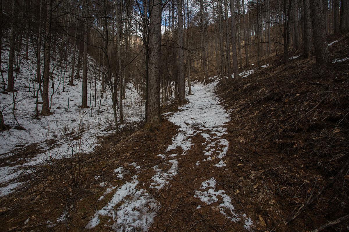 【男山】登山百景-雪がある