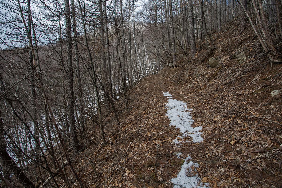 【男山】登山百景-雪が無くなった