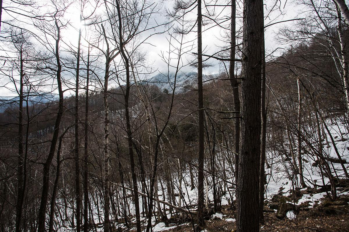 【男山】登山百景-天狗山が見える