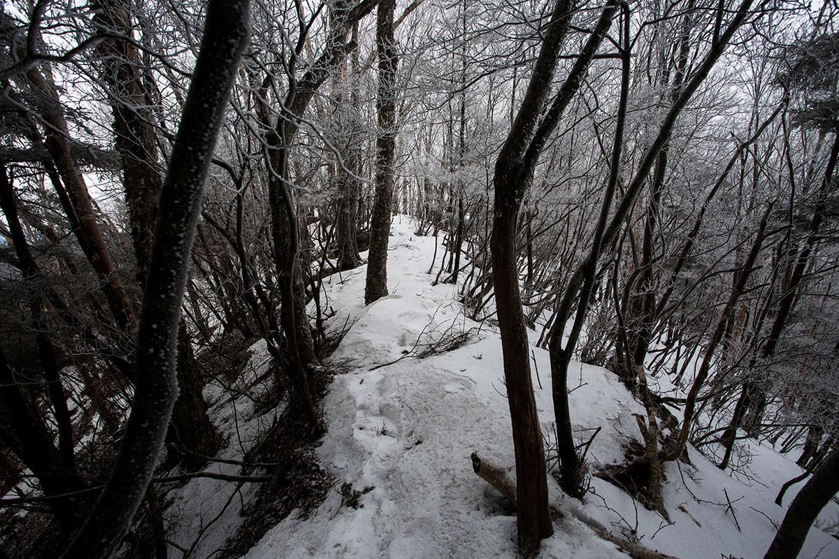 【男山】登山百景-岩場を下りる