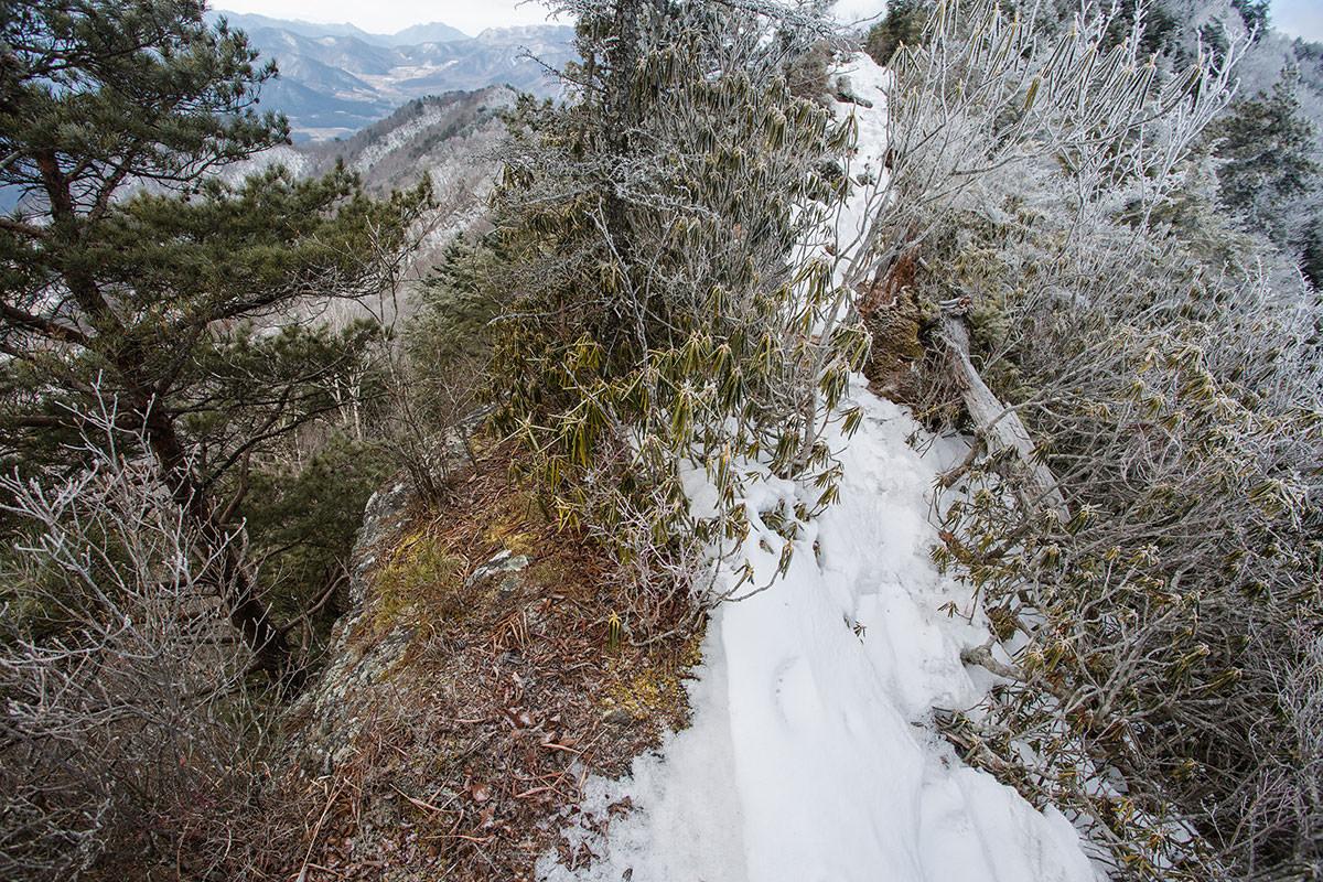 【男山】登山百景-一番狭くて高いところ