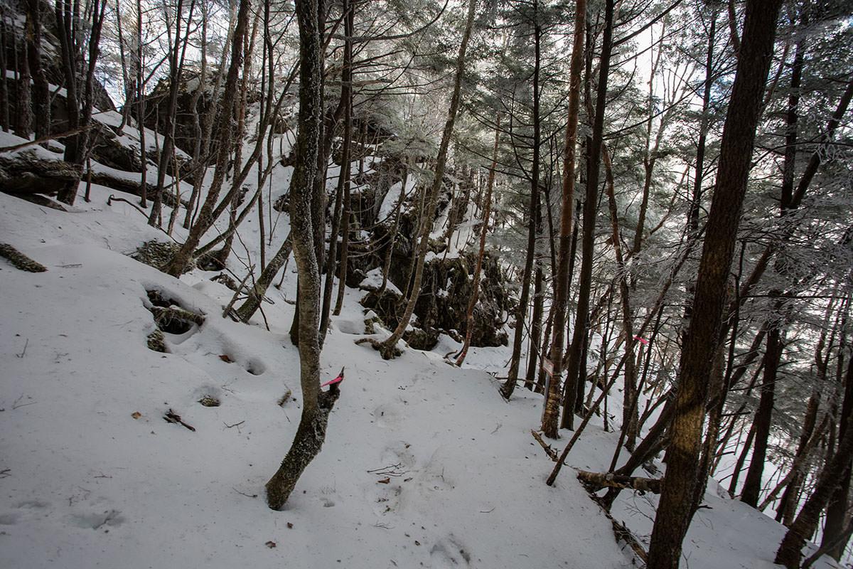 【男山】登山百景-岩を巻いて樹林帯