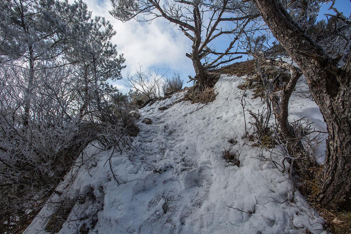 【男山】登山百景-山頂はそこ