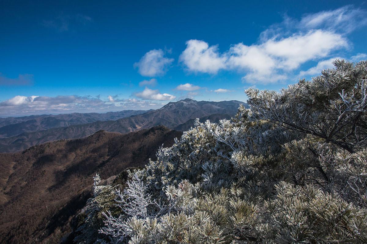 【男山】登山百景-御座山