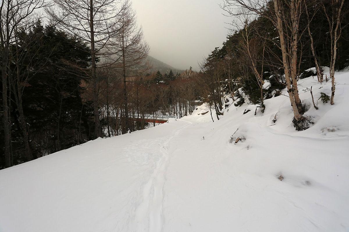 【三叉峰】登山百景-道路のようなところ