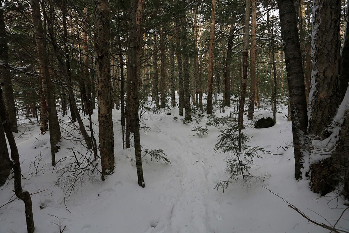 【三叉峰】登山百景-雪がフカフカ