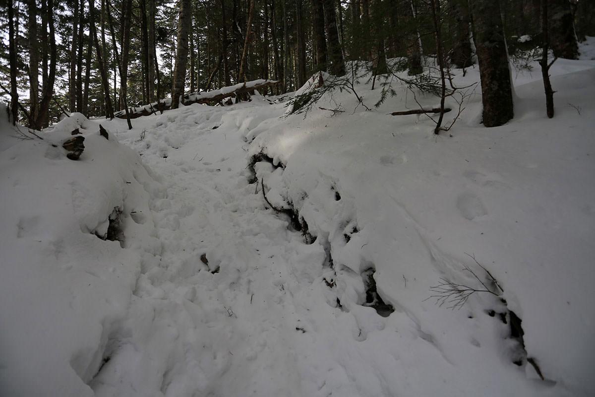 【三叉峰】登山百景-坂は割と急