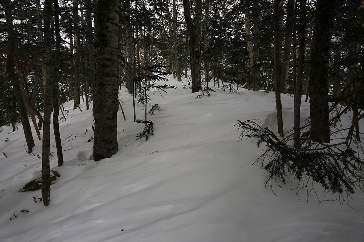 【三叉峰】登山百景-トレースが消えた