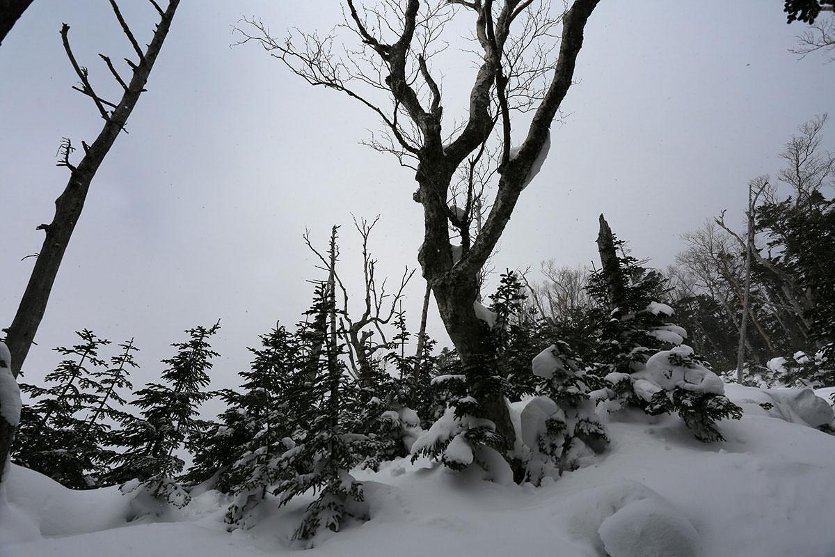 【三叉峰】登山百景-空が明るく見える