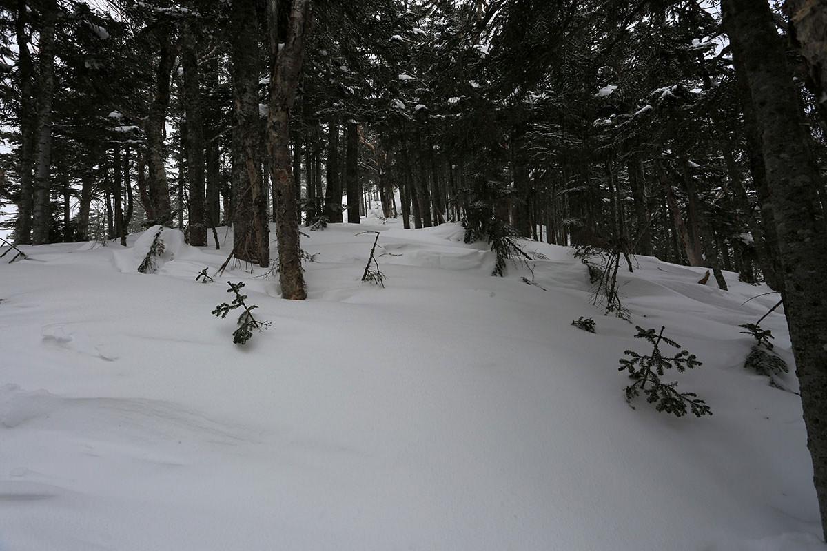 【三叉峰】登山百景-膝くらいまで埋まる
