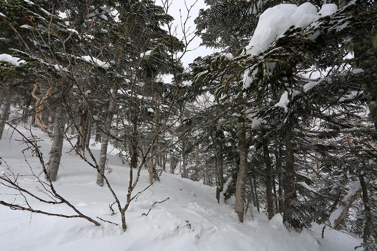 【三叉峰】登山百景-雪がいっぱい
