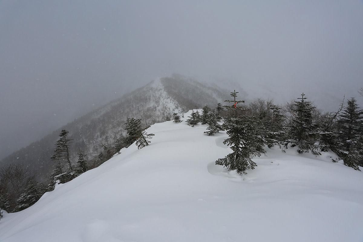 【三叉峰】登山百景-尾根が開けた