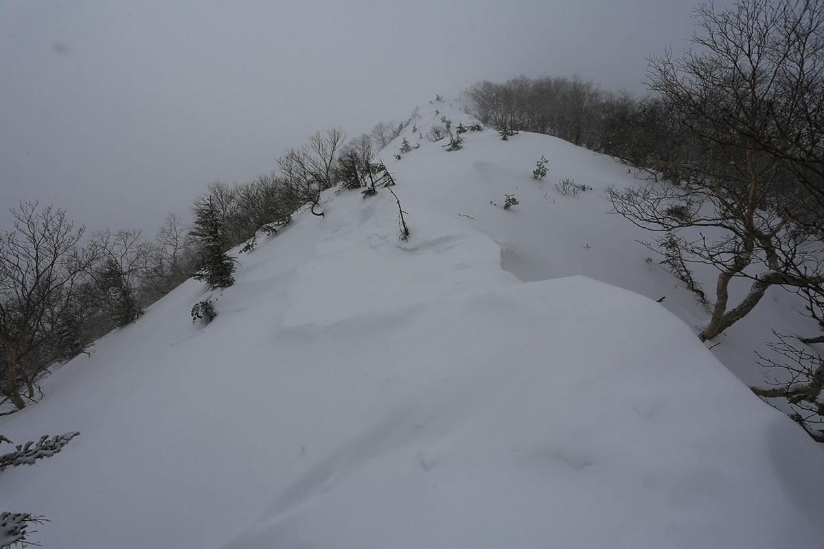 【三叉峰】登山百景-雪が深い