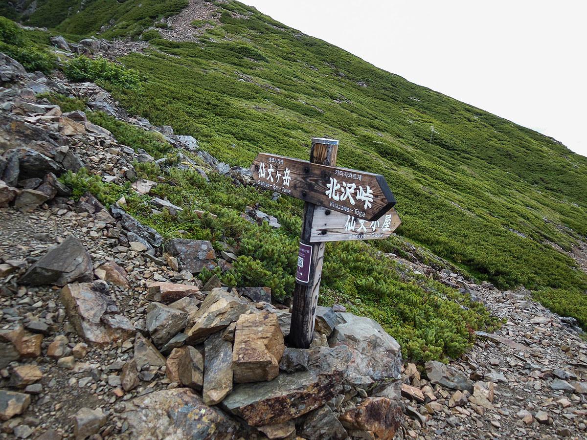 【仙丈ヶ岳】登山百景-小屋への分岐点