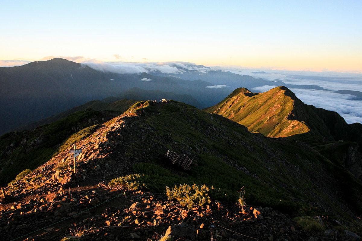 【仙丈ヶ岳】登山百景-最盛期を過ぎても花が多い