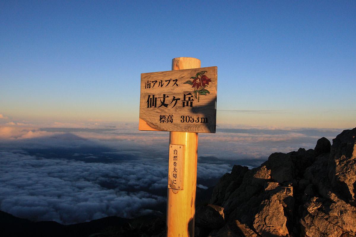 【仙丈ヶ岳】登山百景-盛りは過ぎたけれど綺麗