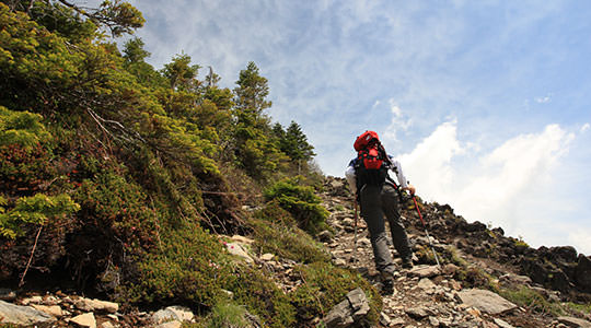 仙人岳 高峰高原表コース