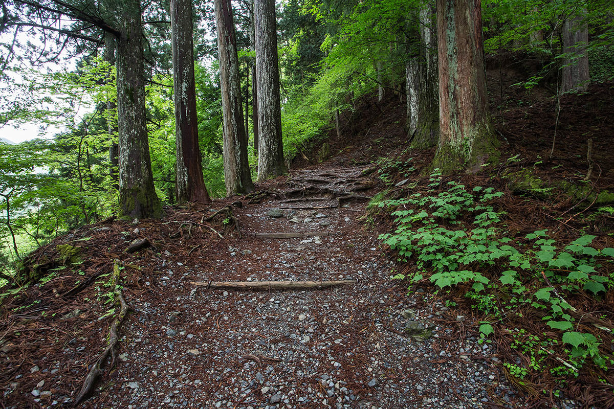 【七面山】登山百景-整備されて歩きやすい