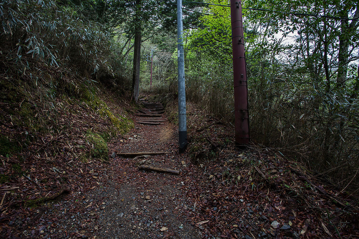 【七面山】登山百景-電柱と電線が多い