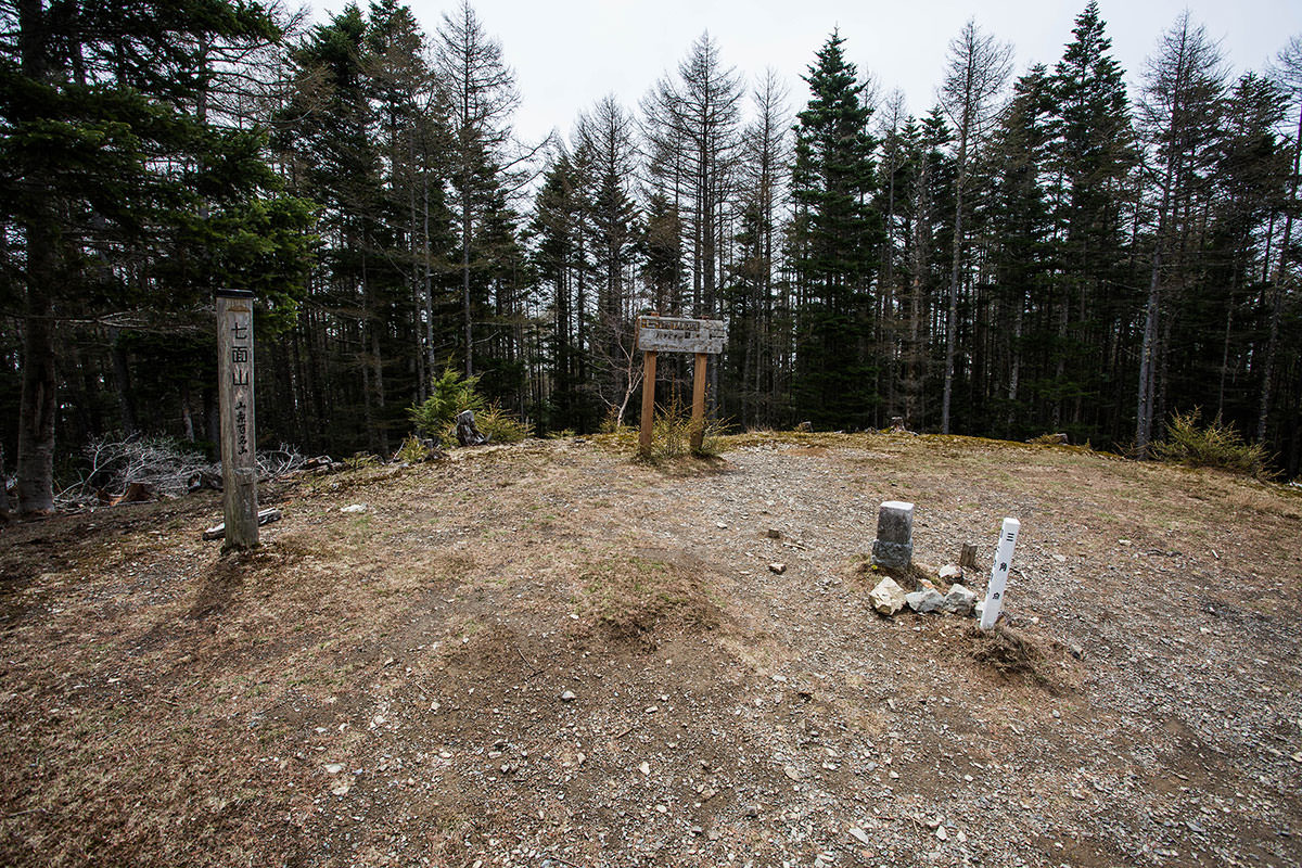 【七面山】登山百景-樹林帯に囲まれている