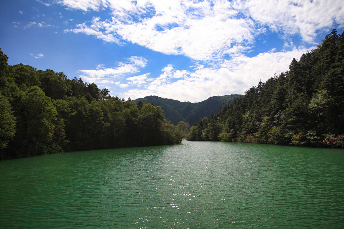 【志賀山】登山百景-大沼池に出た