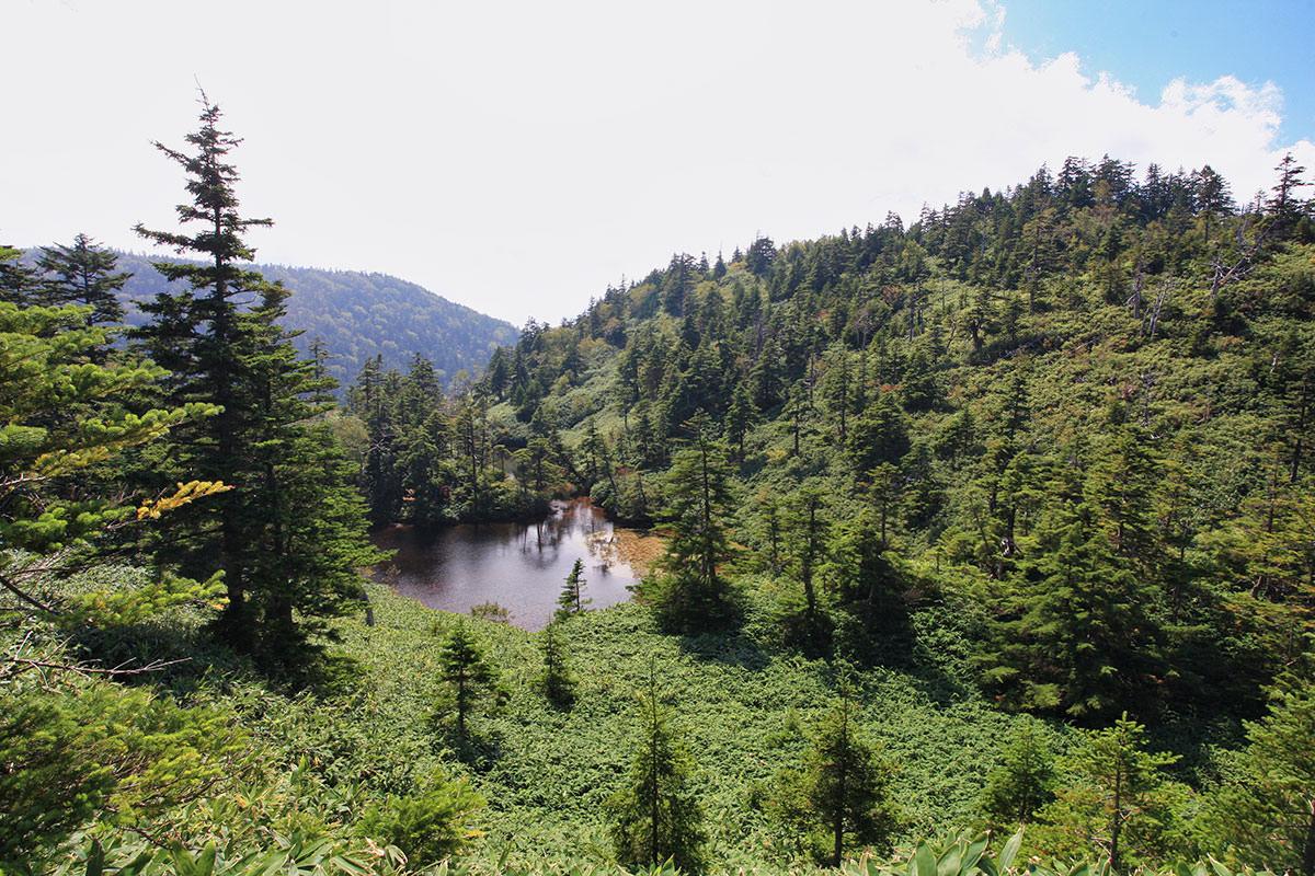 【志賀山】登山百景-大沼池を見下ろす