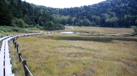 志賀山 大沼池