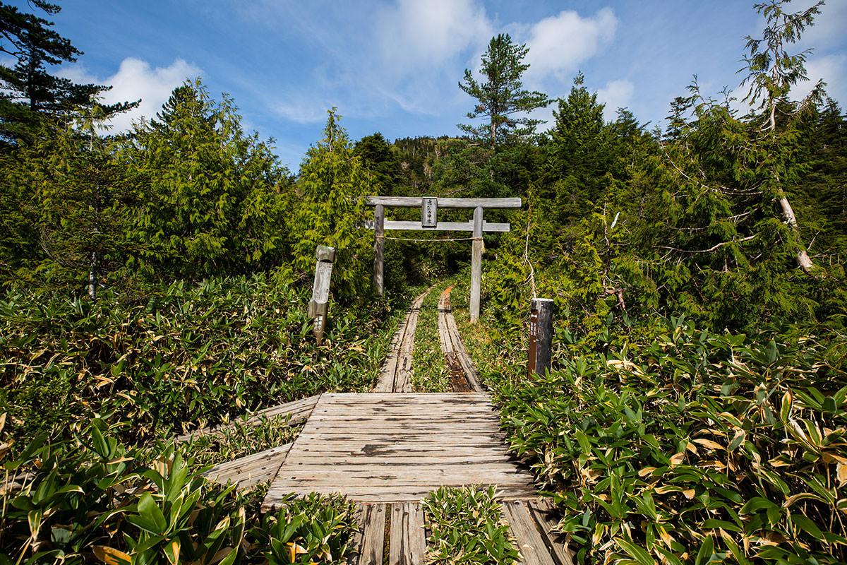 志賀山神社の鳥居