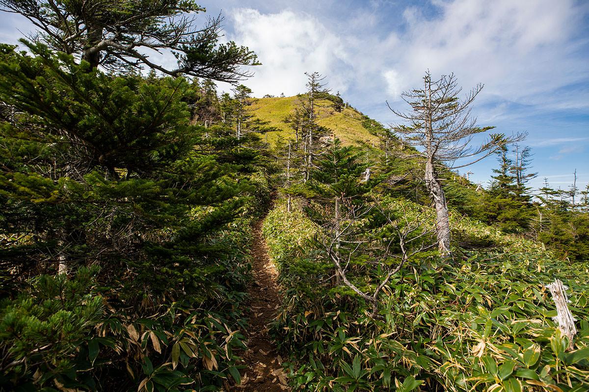 志賀山へ登り返す