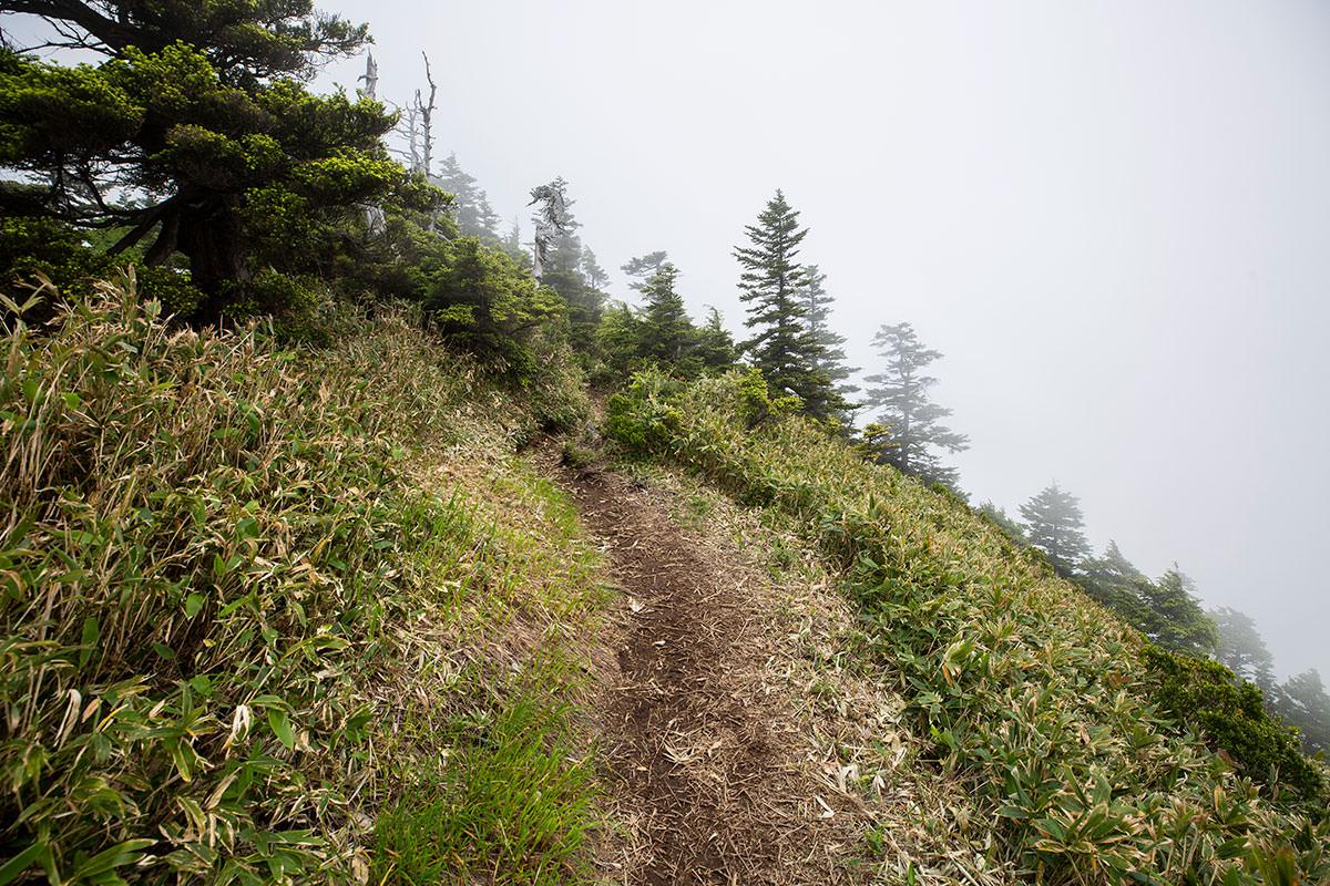 緩やかな傾斜を裏志賀山へ