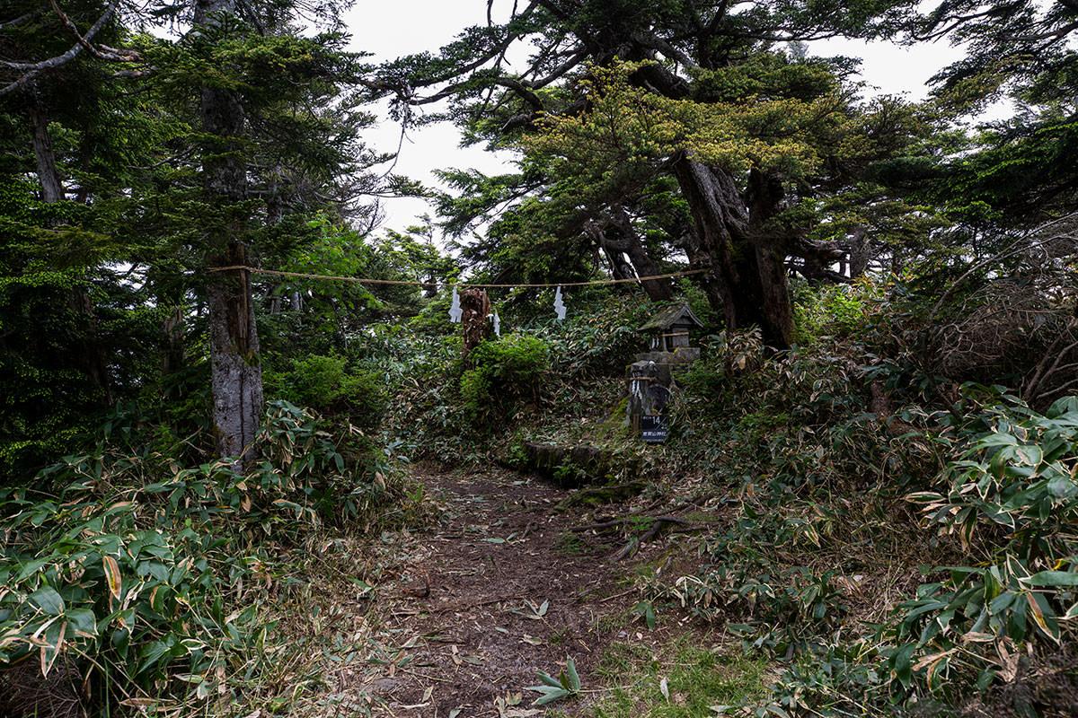 裏志賀山の山頂に着いた