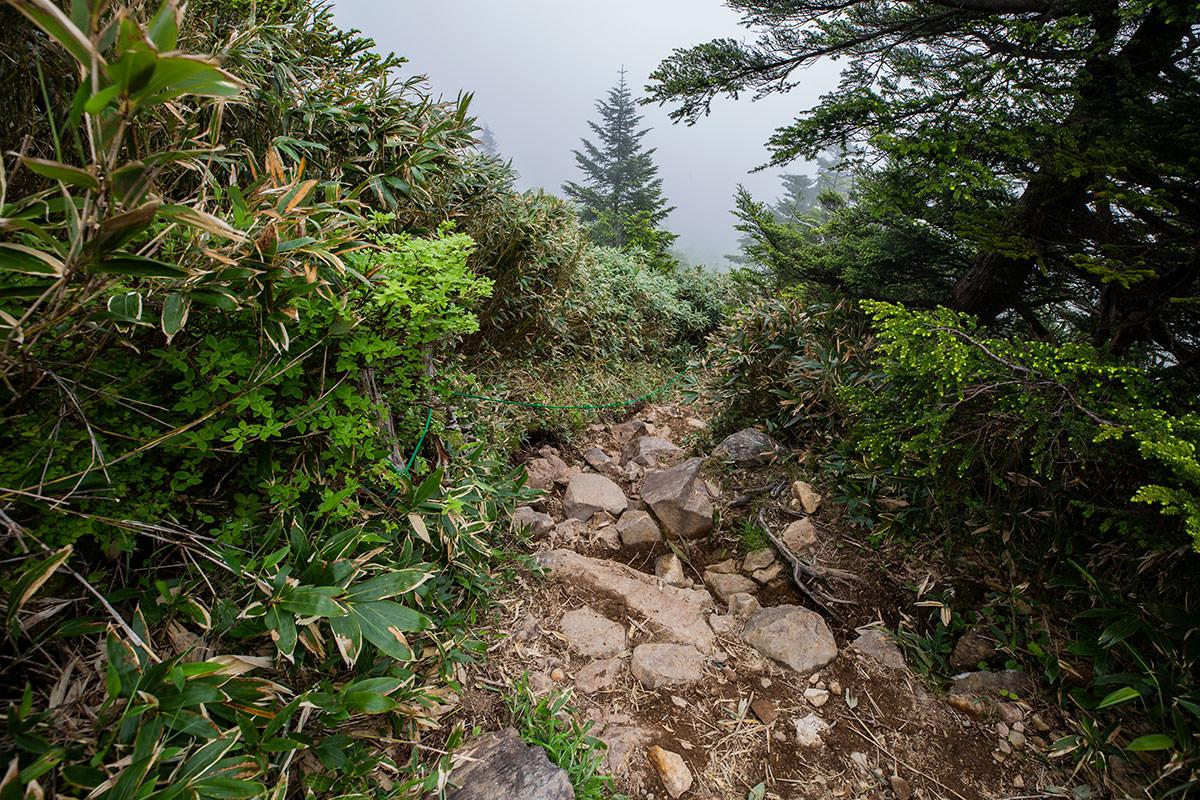 裏志賀山の下りは高い段差と大きな石