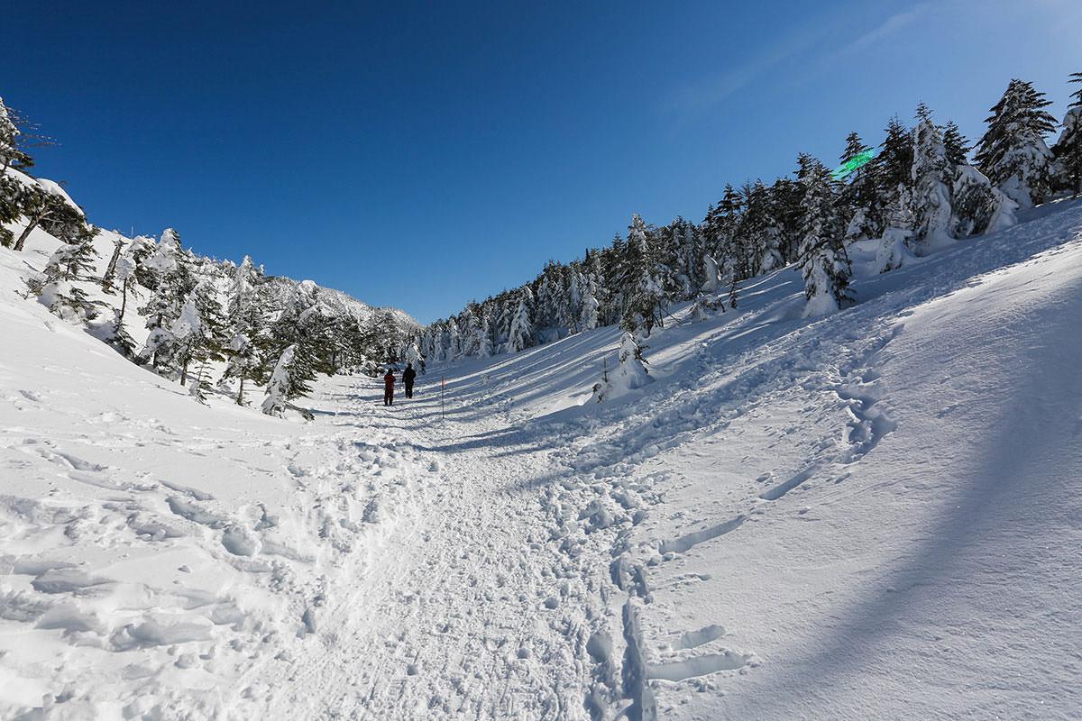 【縞枯山 北八ヶ岳ロープウェイ】登山百景-平らな雪の上を歩いて行く
